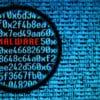 Skyfin, a Malware App