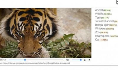Google Cloud Video Intelligence API