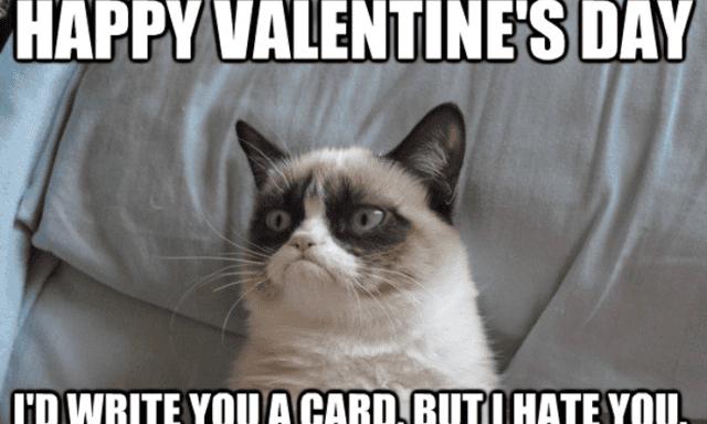 Single Anti Valentine I Hate Valentine Day Creative Meme Being
