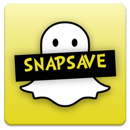 snapsave review