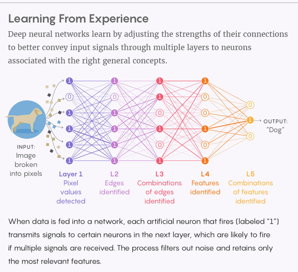 Neural Networks form part of the central concept which delivers AI outputs from advanced math in many devices, including this year's iPhones.