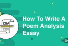 Poem-analysis-essay